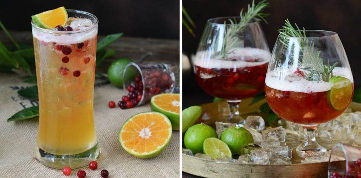 ibi_drink_pro_inpage_oct20-2